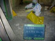 廃石綿袋詰め