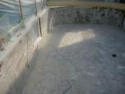 桂浜水族館イルカプール